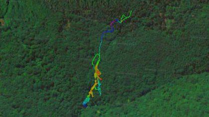 Teplica-satelitna-mapa-detial-posledny-II-1.jpg